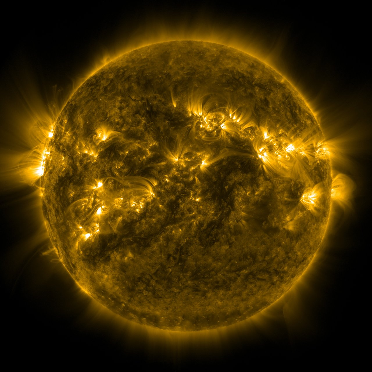 A full disc image of the Sun, part of science week talk by astronomy speaker and science presenter Colin Stuart
